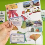 New Year, find a New Penpal